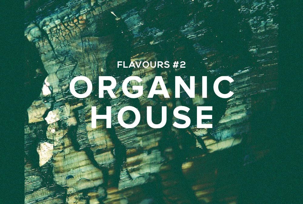 Flavours #2: Organic House